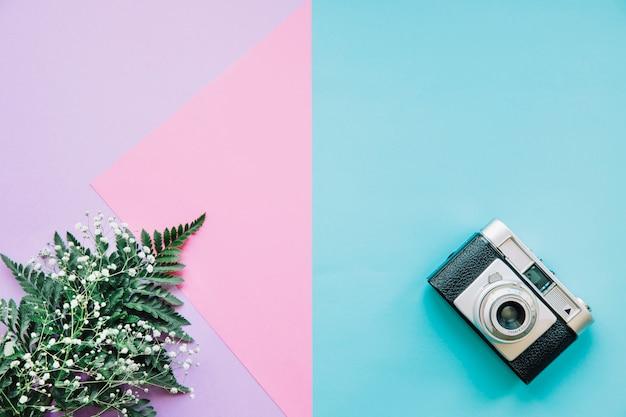 カメラと葉の背景