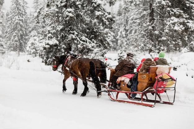 Люди на санях с лошадьми в зимних лесах
