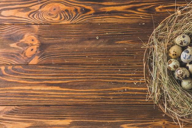 テーブルに卵を入れて巣を作る