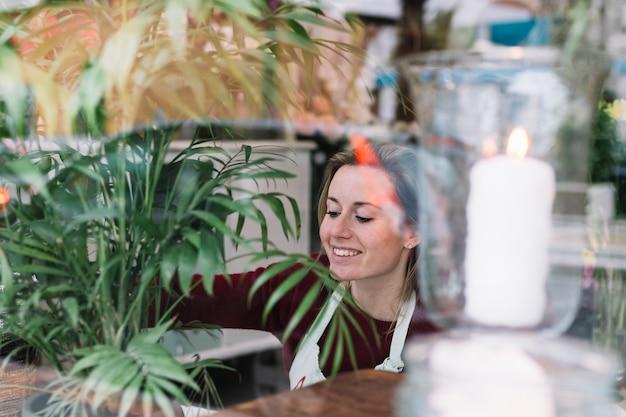 女の子、緑、植物、店で働く