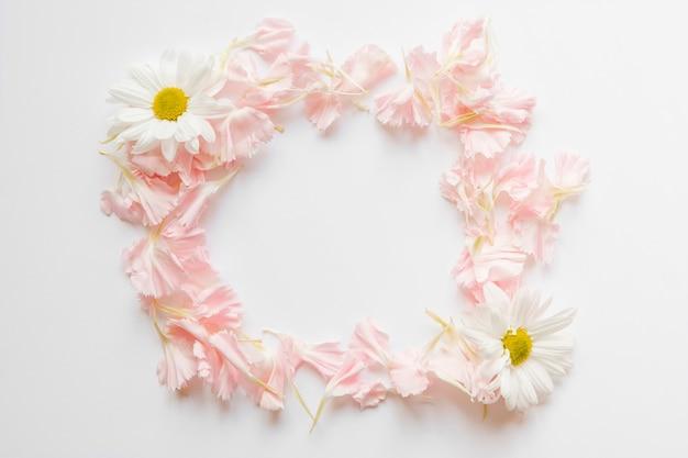 Кадр из цветочных лепестков и ромашек