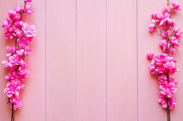 ピンクの背景に咲く小枝