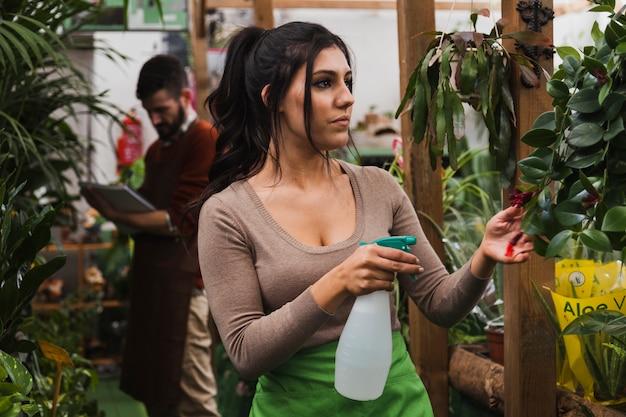 女性、スプレー、ボトル、世話、植物