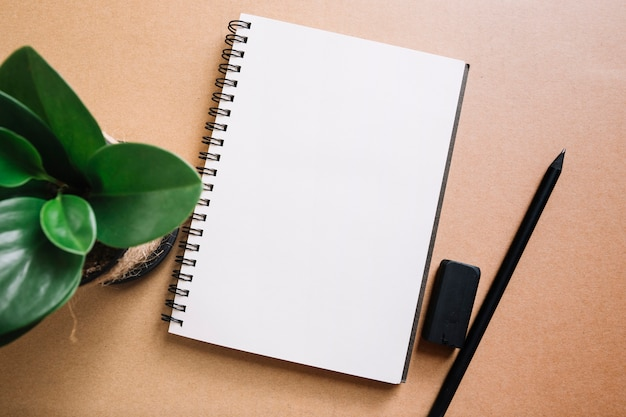 ノートブックの近くに植物と鉛筆
