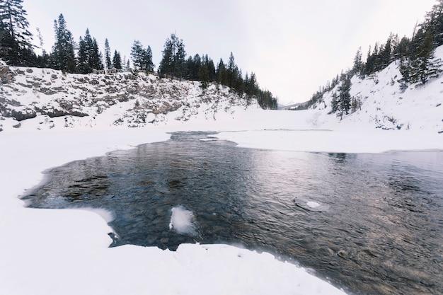 Озеро в заснеженном лесу