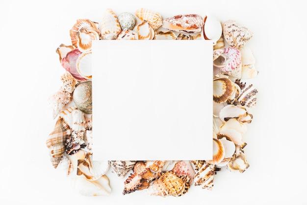 貝殻のヒープの紙シート