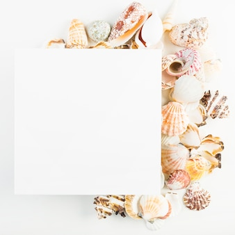 Крупный план лист бумаги для печати вблизи ракушек
