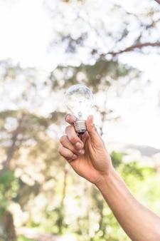 自然に対する電球を持つ概念の手