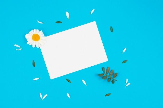 カモミールと葉で紙のリスト