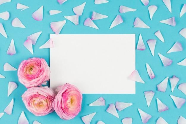 Белый список с цветами на фоне бухты с лепестками