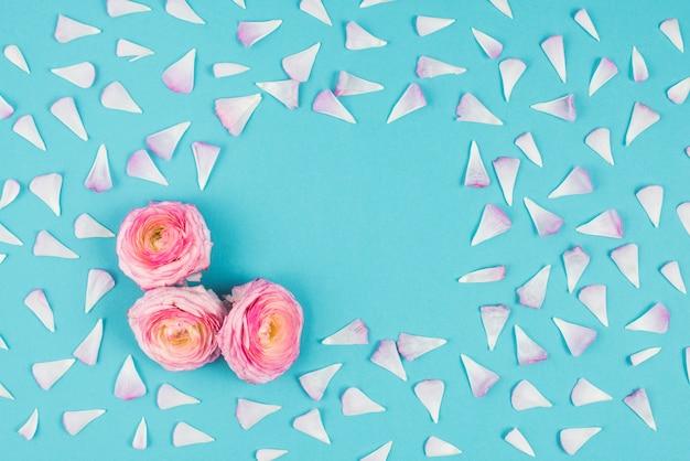 Розовые цветы с лепестками вокруг