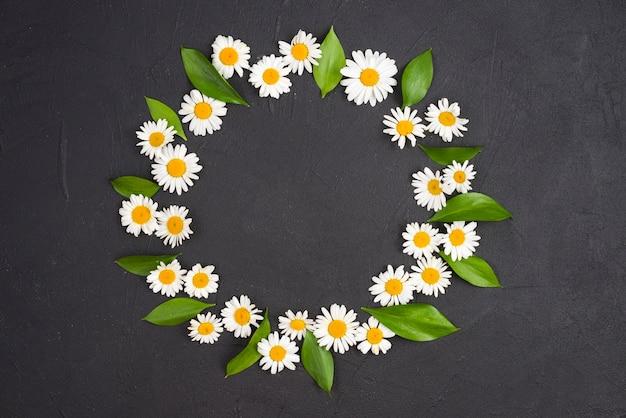 白いデイジーの花輪、葉