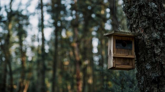 木製の鳥のフィーダーのクローズアップ