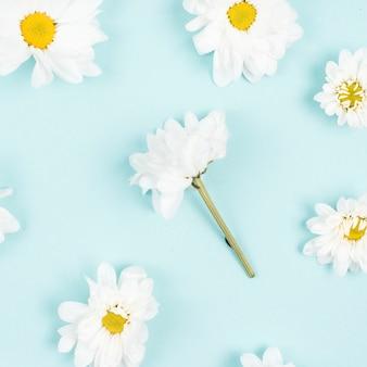 青い背景に白い花のパターン