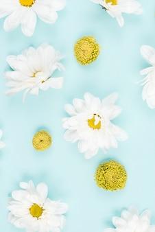 白背景に白と緑の花のオーバーヘッドビュー