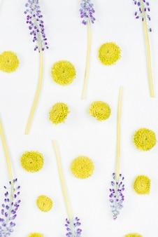 Крупным планом фиолетовый тушь для ресниц и цветок хризантемы на белом фоне
