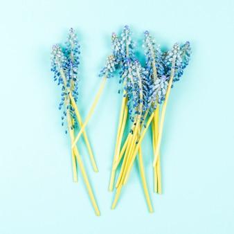 色の背景に青いマスカラの花