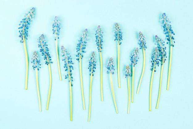 Ряд синих цветов туши для ресниц на цветном фоне