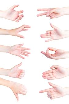 白い背景で隔離された手の様々なジェスチャー