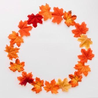 丸で囲まれた秋の葉