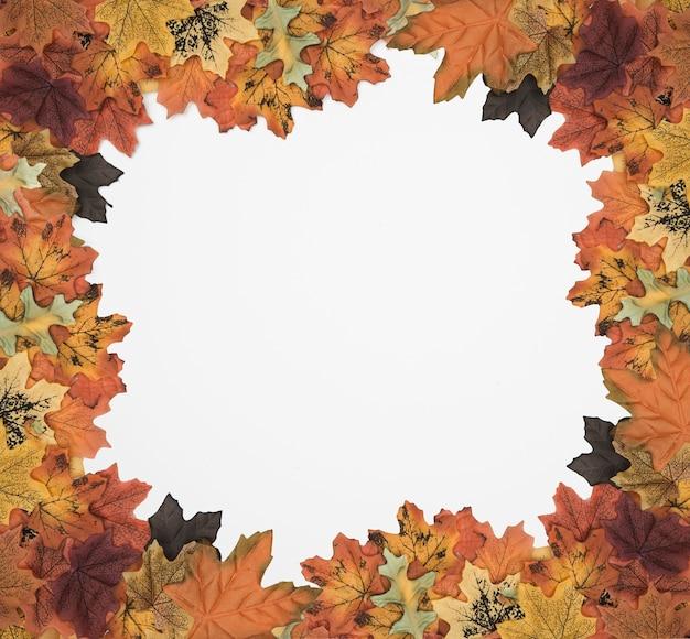 秋の葉の絵のフレーム