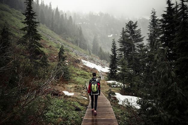 森林の遊歩道を歩く女性の登山人