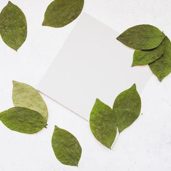 白いページの周りに緑色の葉