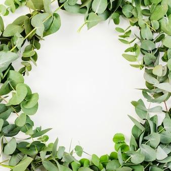 緑の葉で作られた白いフレームのオーバーヘッドビュー