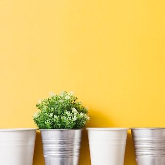 黄色の背景に白い鉢を持つシルバーの鉢植えの植物