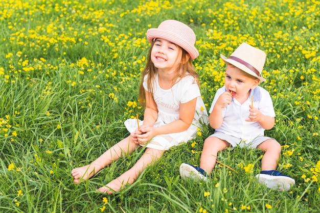 兄弟、姉妹と牧草地に座っているスティック