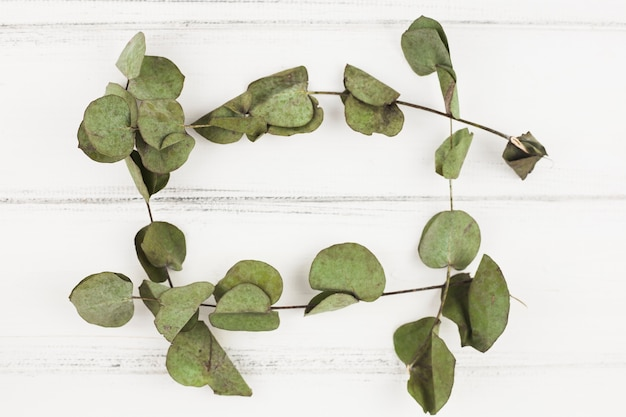 白い木製の背景に乾燥した葉で作られたフレーム