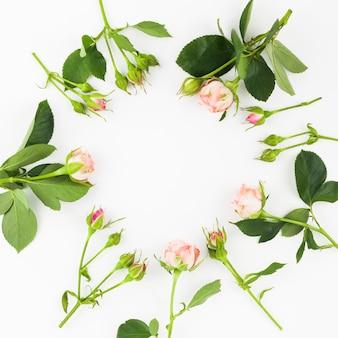 白い背景にピンクのバラと葉で作られたフレーム
