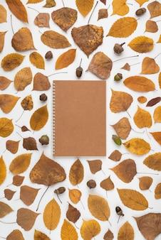 ノートブックの周りの葉やドングリ
