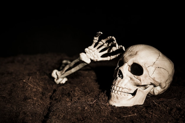 頭蓋骨と骨格の手を地面に
