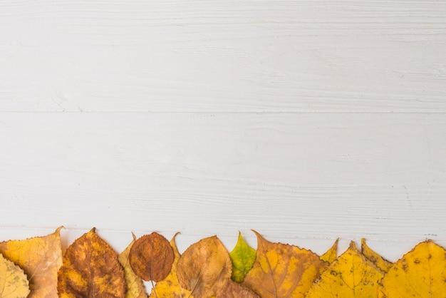 Сухая листва, расположенная внизу