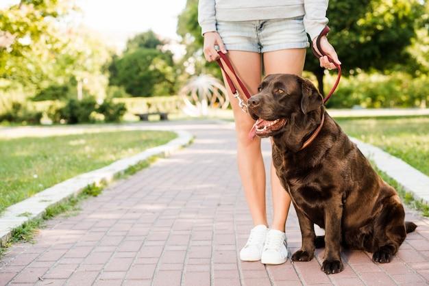 庭に散歩道に彼女の犬と立っている女性
