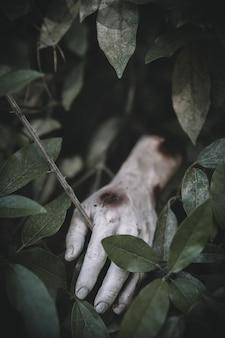 ゾンビの手が芝生から突き出ている