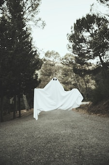 田舎道の上空を飛んでいる暗い幽霊