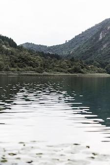 緑の山々の近くの湖の景色の景色