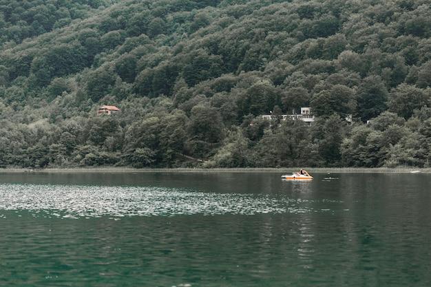 緑の山の近くの牧歌的な湖の景色