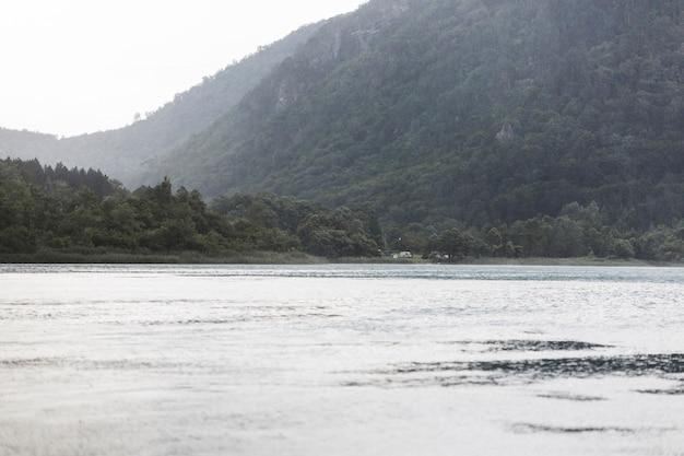 緑の山の近くの湖の牧歌的な景色
