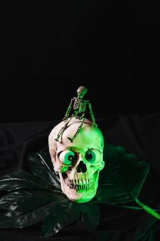 照明された頭蓋骨に小さな骨格
