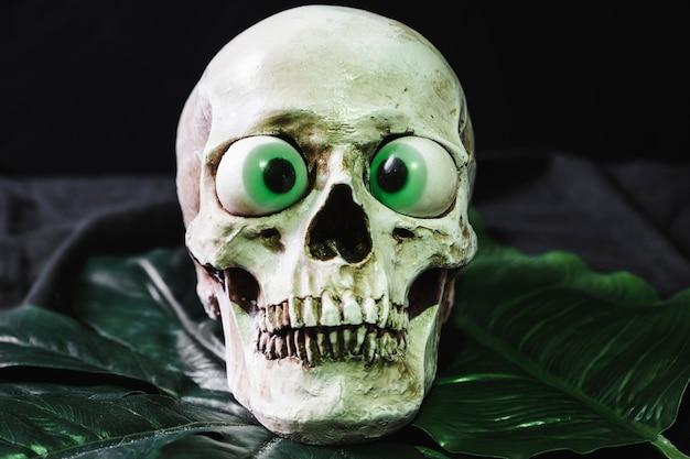 葉の上の頭蓋骨