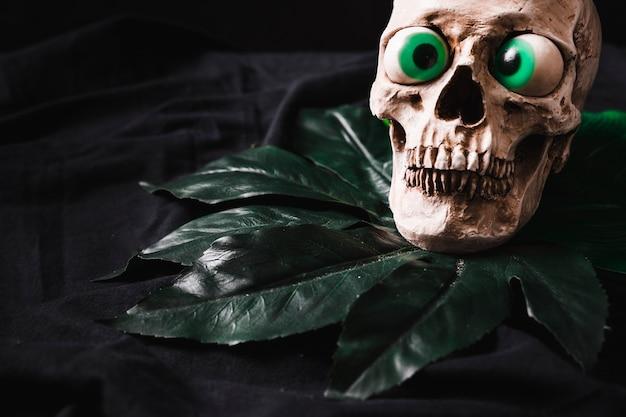 葉の上の恐ろしい頭蓋骨
