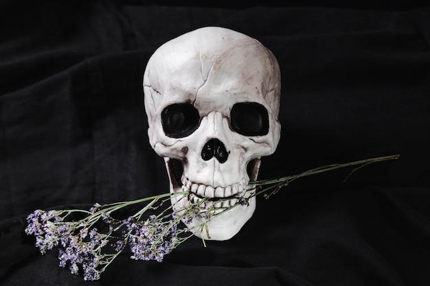 口の中に花を持つ頭蓋骨