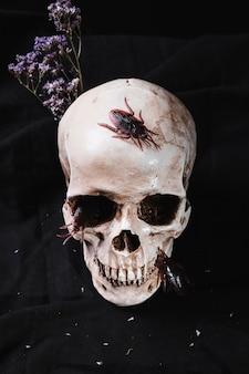 ゴキブリや花が飾られた不気味な頭蓋骨