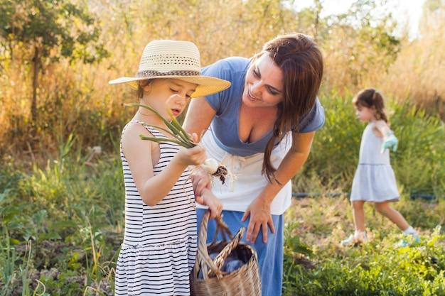 フィールドで春の玉ねぎを収穫している彼女の娘を見ている母