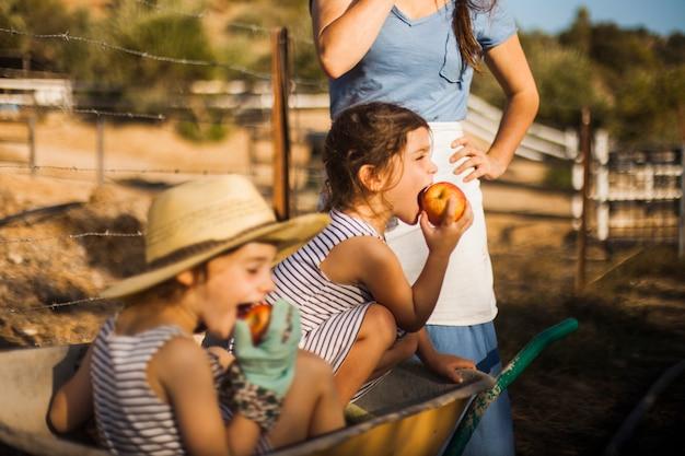 車輪に座っている女の子はリンゴを食べる