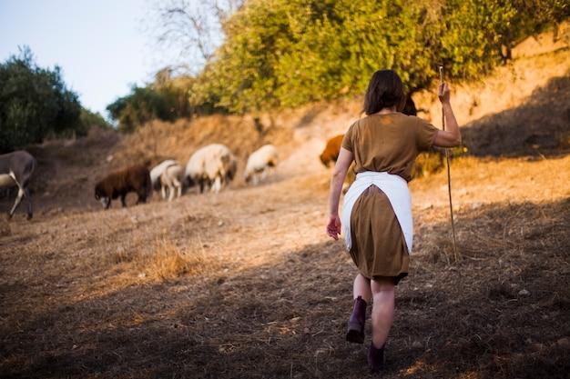 ヒツジを群れながらスティックで歩く女性の後ろ姿