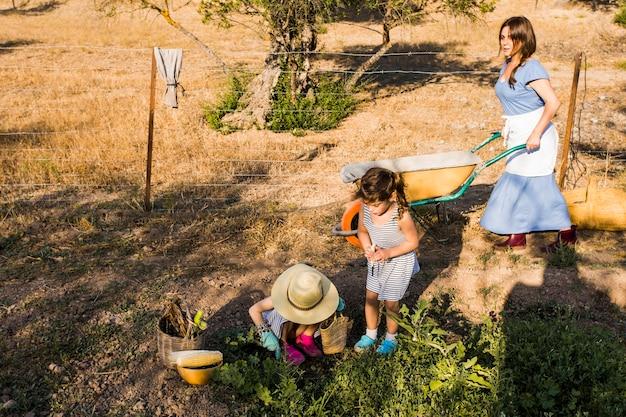 フィールドで収穫している彼女の娘と一輪車を押す女性